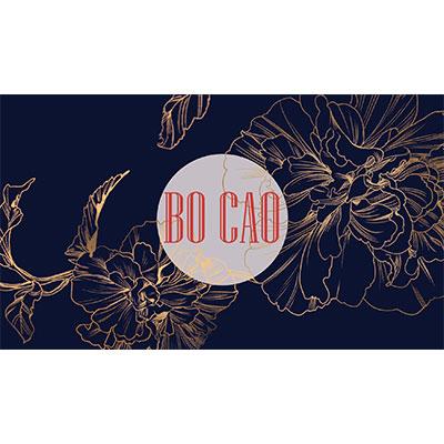 Bo Cao Expo Carte De Visite
